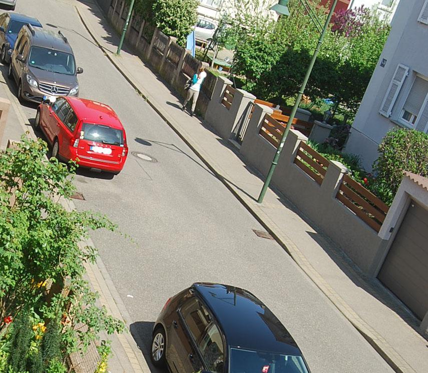 Idioten Nachbarschaft